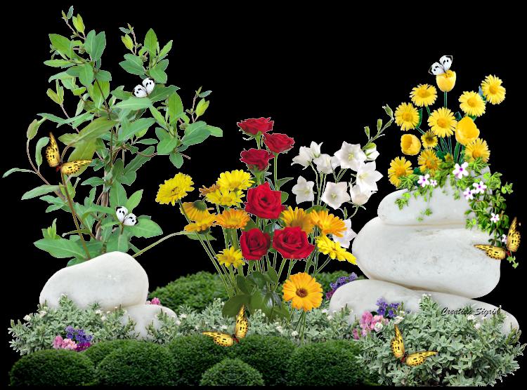 полив цветов в апреле 2021 года