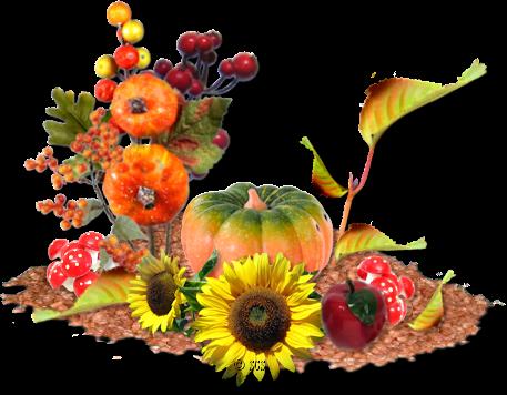 Календарь садовода сентябрь 2019